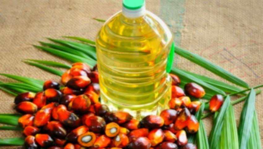 Foto: Islanda a interzis comercializarea oricărui produs care conține ulei de palmier
