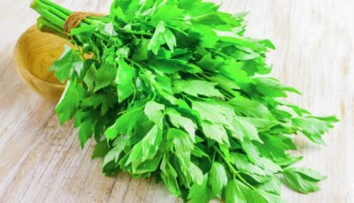 Leușteanul, planta primăverii care topește grăsimile și elimină toxinele