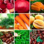 Foto: Când se plantează legumele în grădină? Un calendar util pentru răsaduri și semințe