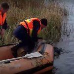 Foto: Video. Tragedie la pescuit. Un bărbat s-a înecat după ce a căzut în propria plasă
