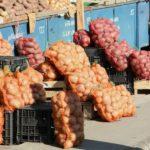 Foto: Un pesticid nou, foarte periculos, a început să fie folosit pe scară largă în agricultură