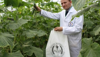 ANSA verifică nivelurile de nitrați și pesticide din legumele de producție autohtonă