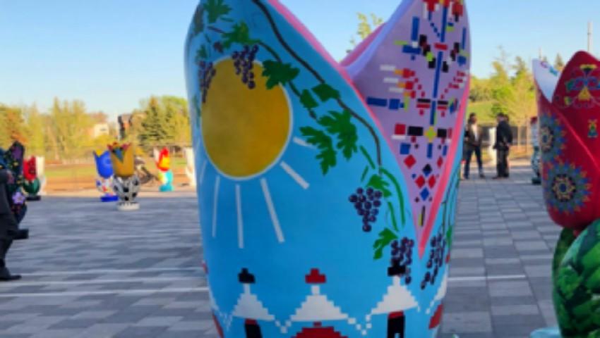 Foto: Moldova, pictată pe o lalea gigantă la Festivalul canadian al Lalelelor. Foto