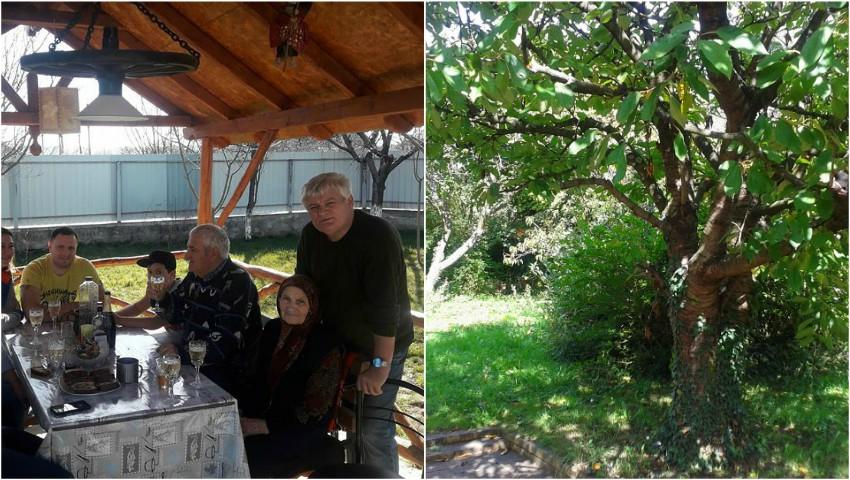 Foto: Expoziție de picturi și covoare țesute la Sărătenii Vechi, la casa părintească a pictorului Leonid Popescu
