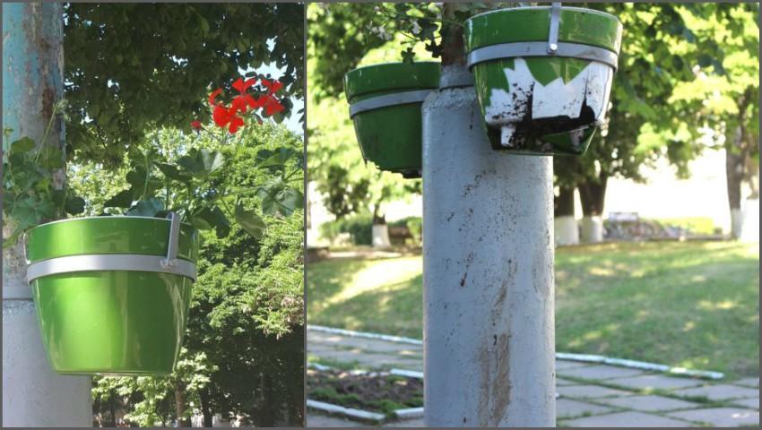 Foto: Revoltător! Zeci de ghivece cu flori au fost vandalizate imediat după ce au fost instalate