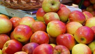 Moldova a fost inclusă în Top 10 cei mai mari exportatori de mere din lume