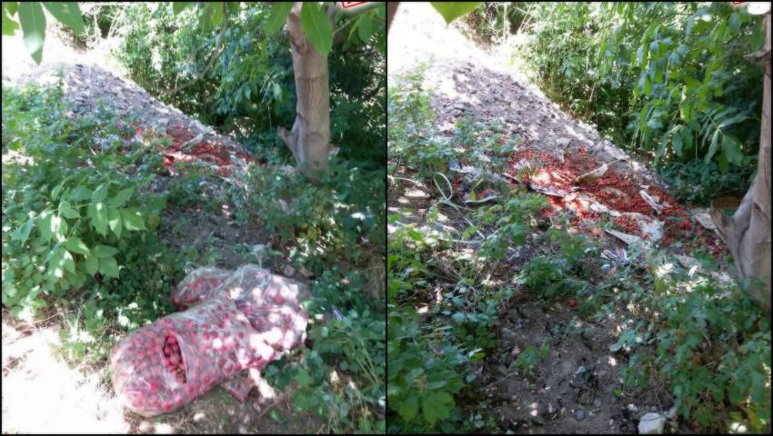 Foto: Mizerie de nedescris în apropierea râului Bâc, regiunea Pieței angro din strada Calea Basarabiei