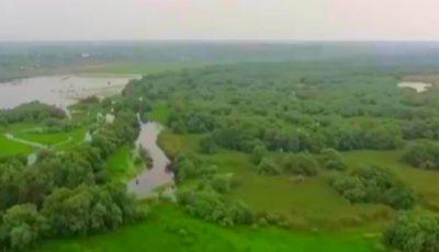 Rezervația Prutul de Jos a fost inclusă în patrimoniul mondial UNESCO