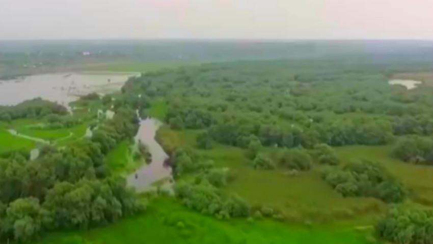 Foto: Rezervația Prutul de Jos a fost inclusă în patrimoniul mondial UNESCO