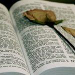 Foto: Cele mai impresionante citate despre iubire culese din Biblie