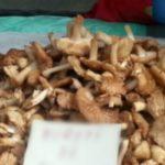 Foto: O femeie a ajuns în stare gravă la spital după ce s-a intoxicat cu ciuperci de la piață