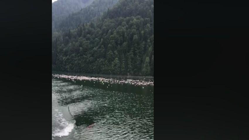 Foto: Imagini dezolante! O locație turistică faimoasă, invadată de pungi și sticle de plastic. Video
