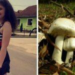 Foto: O tânără a avut nevoie de transplant de ficat după ce s-a intoxicat cu ciuperci. Tatăl acesteia a decedat în spital