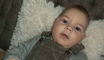 David are nevoie de ajutorul nostru! Puiul suferă de paralizie cerebrală, microcefalie – boală care îi aduce dureri insuportabile