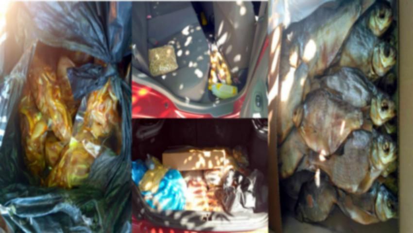 Foto: Pește, carne și cașcaval alterat, transportate în mașina încinsă de soare. Produsele urmau să ajungă la vânzare în piețe