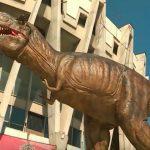 Foto: Două reptile uriaşe au apărut în scuarul circului din Chișinău