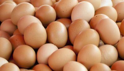 Moldovenii vor putea exporta ouă și carne de pasăre în UE