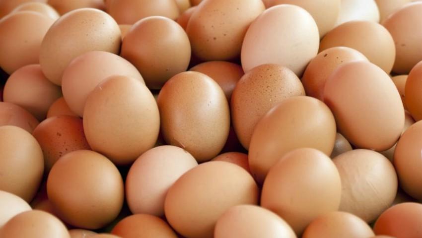Foto: Moldovenii vor putea exporta ouă și carne de pasăre în UE