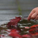 Foto: Când vom scăpa de frig și vremea posomorâtă? Vezi prognoza meteo pentru zilele următoare