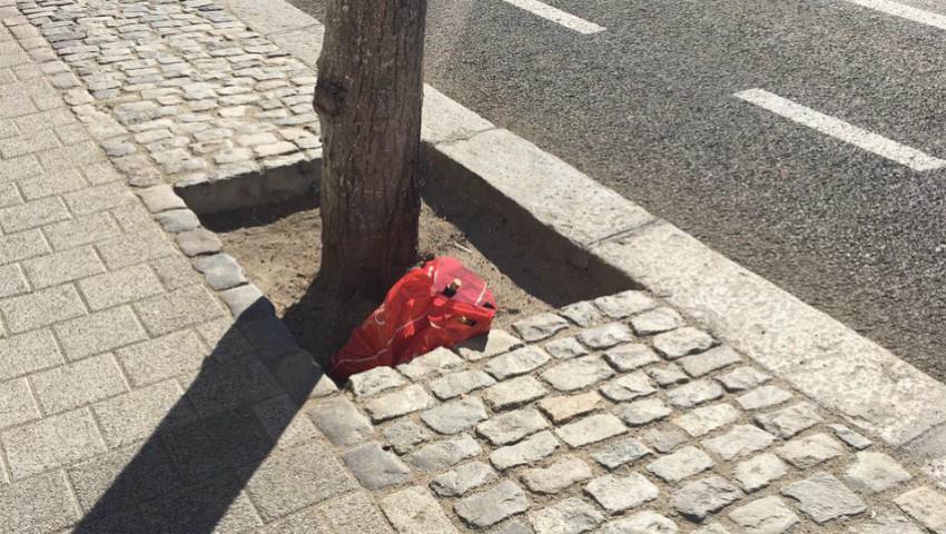 Foto: Amenzi de până la 1500 de lei pentru cei care aruncă gunoiul la întâmplare. Iată încălcările pentru care poți fi sanționat!