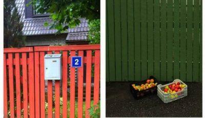 În Estonia, localnicii își scot recolta în stradă pentru a o împărți cu trecătorii