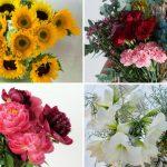 Foto: Ce flori să dăruiești femeilor în funcție de zodie