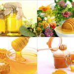 Foto: 14 tipuri de miere și recomandările lor pentru diferite afecțiuni