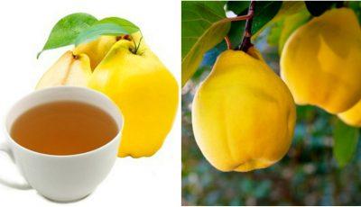 Ceaiul de gutui ameliorează digestia, reface celulele ficatului și pancreasului