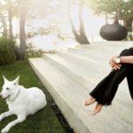 Foto: Cum arata casa lui Jennifer Aniston?