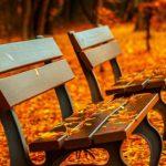 Foto: Horoscopul lunar: Vezi ce ți-au pregătit astrele în luna noiembrie