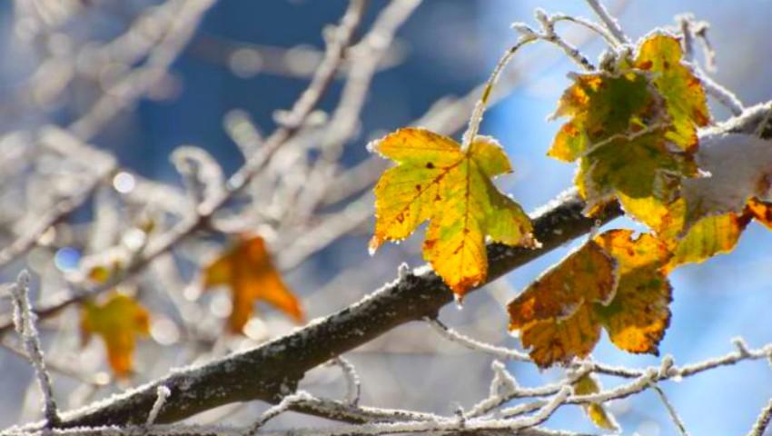 Foto: Avertizare! Meteorologii au emis un nou cod galben de îngheț