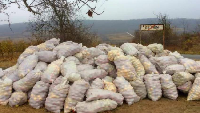 Foto: Saci cu mere care se strică, la intrarea într-o localitate din Moldova
