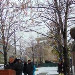 Foto: Șase noi busturi au fost înălțate pe Aleea Savanților și Medicilor iluștri, din Chișinău