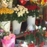 Foto: Unele flori din comerț sunt tratate cu substanțe toxice. Iată pe care să le eviți