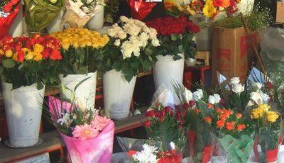 Unele flori din comerț sunt tratate cu substanțe toxice. Iată pe care să le eviți