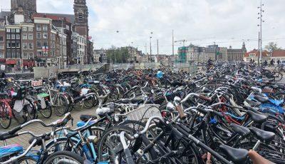 Țara care îi plătește pe angajați dacă merg la serviciu cu bicicleta