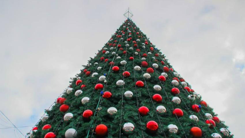 Foto: Foto. Impresionant! Cum arată Bradul de Crăciun din centrul capitalei, în plină zi
