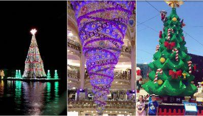 Iată unde poți admira cei mai spectaculoși brazi de Crăciun din lume!