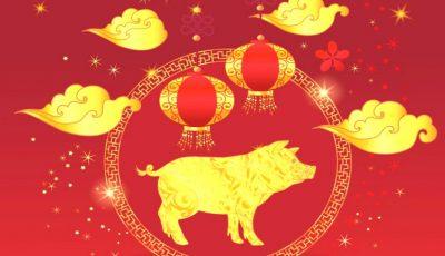 Cum va fi 2019 – Anul Mistrețului de Pământ, potrivit horoscopului chinezesc