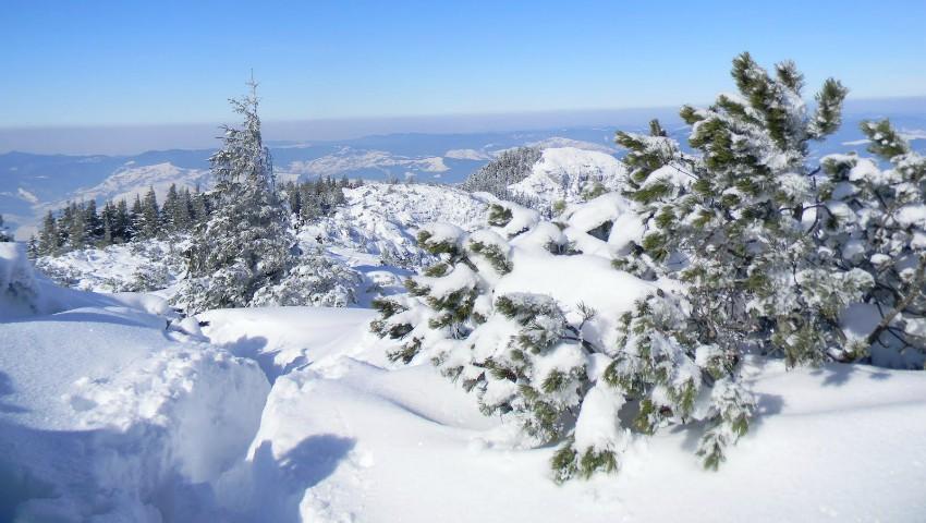 Foto: Avertizare meteo! Cod galben de ninsori puternice și viscol, în Moldova