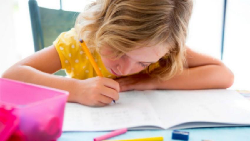 Foto: Temele pentru acasă ale elevilor: Ministrul Educației lansează procedura de consultare a opiniei publice