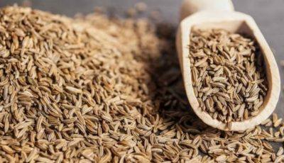 Semințele de chimion – un remediu naturist pentru imunitate, răceli și probleme digestive