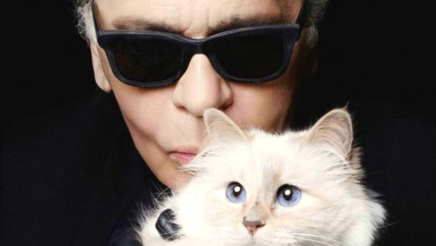 Pisica lui Karl Lagerfeld este singura moștenitoare a averii designerului estimată la 125 milioane de dolari
