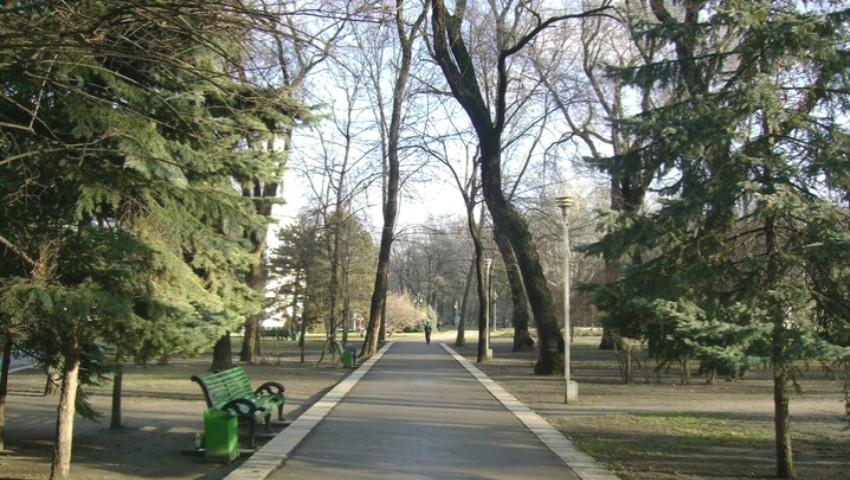 Foto: În scuarul Catedralei au început lucrările de defrișare a copacilor