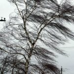 Foto: Meteorologii au emis cod galben de vânt, iar de mâine revin precipitațiile