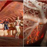 Foto: Imagini spectaculoase. O călătorie în interiorul corpului uman poți face doar la Muzeul Corpus din Olanda