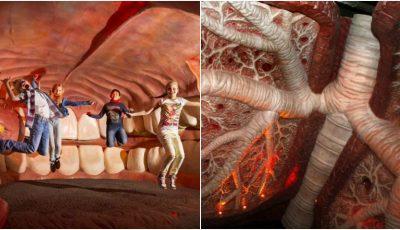 Imagini spectaculoase. O călătorie în interiorul corpului uman poți face doar la Muzeul Corpus din Olanda