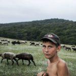 Foto: Un fotograf din Moldova a ajuns în lista câștigătorilor concursului Sony World Photography Awards 2019