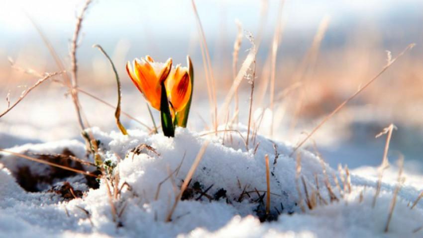 Foto: Vine primăvara. Temperaturi de până la +13 grade în weekend