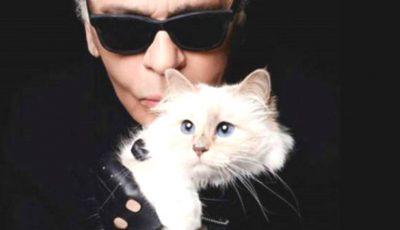"""Pisica lui Karl Lagerfeld ,,lansează"""" o linie de haine, în memoria creatorului de modă"""